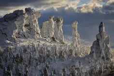 Всероссийский фотоконкурс Русского географического общества, направленный на популяризацию и сохранение дикой природы России.
