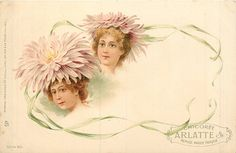 two girls heads under pink chrysanthemum blossoms