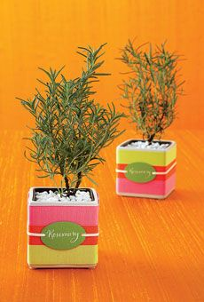 Dress up your tables and give pals a prezzie to remember with individual rosemary plants. They're a symbol of fidelity—and superhandy when you're throwing together a roast chicken. Wrap each pot in lively ribbon (use double-sided tape to make it stick), and string on a tag made with a craft punch.