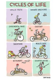 Cycles of Life - Grant Snider