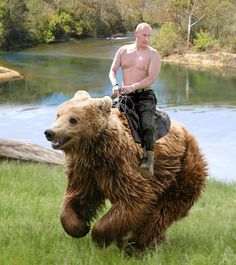 Seeking photoshop of shirtless Putin riding a polar bear - Democratic Underground