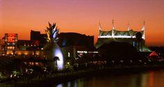 Downtown Disney Hotel - Walt Disney World Resort Hotel - Hilton Orlando Lake Buena Vista
