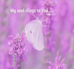 Fibromyalgia Awareness Day on May 12 is meant to help patients educate others and spread awareness about this little understood chronic pain condition. Fibromyalgia Awareness Day, Psalm 63, Butterflies Flying, Daughter Of God, Bible Scriptures, Bible Quotes, Biblical Verses, Scripture Verses, Gods Love