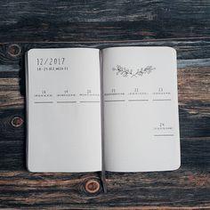 Bullet journal weekly layout, open bullet journal weekly layout, highlighted date headers, plant drawing. @frau_kleinkariert