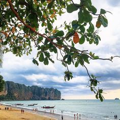 #aonangbeach #travelgram #thaiig #beautifuldestinations #krabi #insta_thailand #landscapephotography #thebeautyofthailand #travelgram #travelphotography #wow_thailand #thailandismagic #thailandluxe #ig_thailand #amzthld #ig_thailandia #thailand_allshots #tourismthailand  #ig_siam #siamthai_ig  #dream_spots  #bestnatureshots  #adayinthailand #loves_siam #thaistagram  #thaitraveling #traveldiaries #wonderful_places #lostinthailand #earth_destinations by shoemobi
