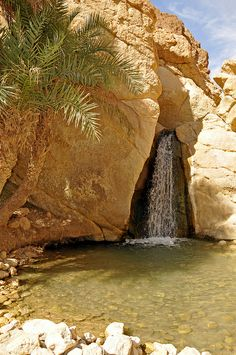 Qafash, Tunisia very beautiful view, in summer time and very hot place . The Beautiful Country, Beautiful Places, Places To Travel, Places To See, National Park Lodges, Reserva Natural, Desert Life, Holiday Places, Travel Tours