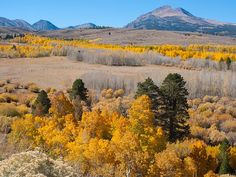 Lua de mel | Destinos no Hemisfério norte para curtir o outono