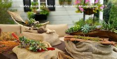 My latest garden craft uses repurposedpalmfronds as containers for succulent plants. I love the way the containers look and I'm very satisfied with how easy they are to make. &nbsp…