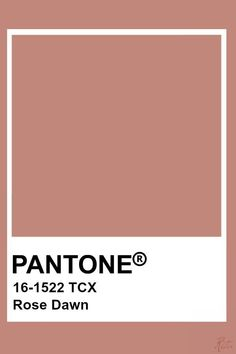 Pantone Old Rose Pantone Swatches, Color Swatches, Pantone Colour Palettes, Pantone Color, Brown Pantone, Pantone Blue, Colour Pallete, Colour Schemes, Old Rose Color Palette