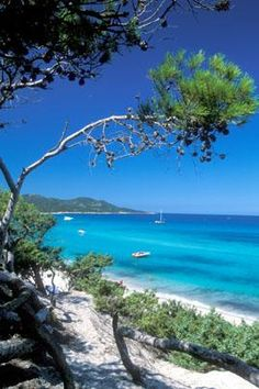 My dream spot in Corsica , France this Summer.