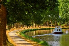 This is an amazing area of France. Join us in September on our iconic bike barge trip. See our website for all the details. Le Canal Du Midi, Barge Boat, Destinations, Ville France, Canal Boat, Seaside Towns, City Architecture, France Travel, Toulouse