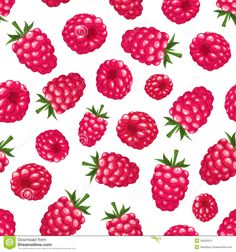 tumblr raspberry drawing - Cerca amb Google