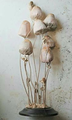 Textile toadstools by Mr Finch