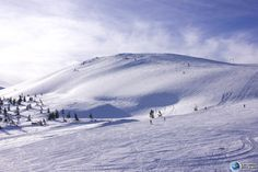 Picture of the Carpathian Mountains