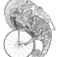 'Chameleons on a pennyfarthing' by ValMyburgh Penny Farthing, Chameleons, Painting & Drawing, Paintings, Ink, Drawings, Painting Art, Painting, Paint