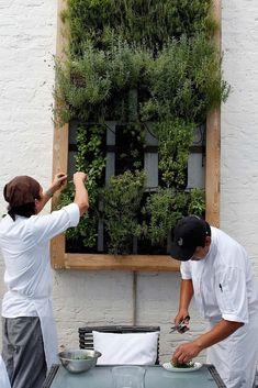 Vertical herb garden. #LoveNature