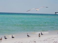 gulf of mexico..love it!(: