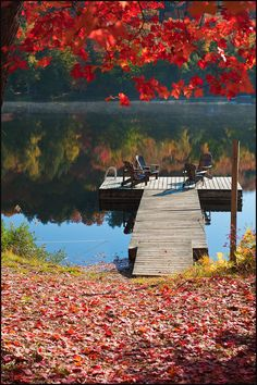 Colors of Fall in Algonquin Park by IgorLaptev, via Flickr