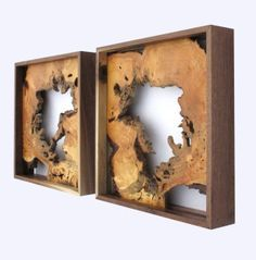 wooden wall art root balls