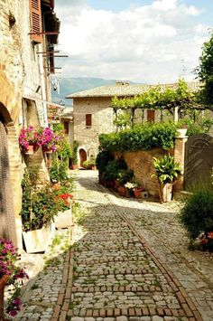 Montefalco, province of Perugia, Umbria, Italy. For luxury hotels in Umbria… Places Around The World, Oh The Places You'll Go, Travel Around The World, Places To Travel, Around The Worlds, Perugia Italy, Umbria Italy, Italy Vacation, Italy Travel