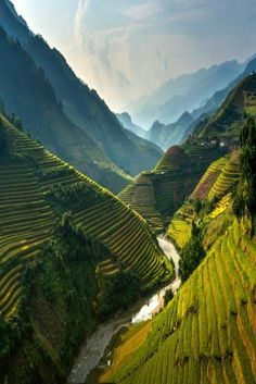 Mu cang chai, Vietnam, by sarawut Intarob - Mù Cang Chải is a rural district of Yên Bái Province, in the Northeast region of Vietnam. As of the district had a population of Vietnam Voyage, Vietnam Travel, Asia Travel, Vietnam Hotels, Visit Vietnam, Laos, Places To Travel, Places To See, Places Around The World
