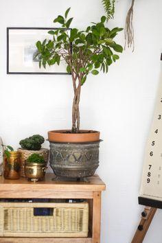 Jak se styl ratanový nábytek pro doma