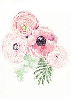 Pink Ranunculus Floral – Watercolor Print