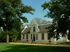 The beauty of Cape Dutch architecture at Simonsig Winery, Stellenbosch, South Africa.