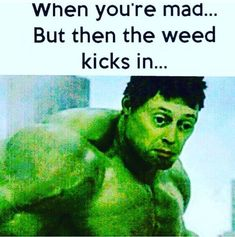 Incredibly Funny Hulk Memes That Will Make You Laugh Like Crazy Bob Marley, Medical Marijuana, Cannabis, Marijuana Funny, Hulk Memes, Weed Jokes, Vaporizer Reviews, Stoner Humor, Like Crazy