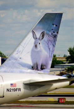Frontier Airlines Airbus A320-214 N263FR 'Jack the Rabbit'