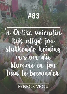 "__[Fynbos Vrou/FB] # 83 "" 'n gawe vriendin kyk. Quotations, Qoutes, Life Quotes, Afrikaanse Quotes, Special Words, Day Wishes, Positive Thoughts, Friendship Quotes, Beautiful Words"