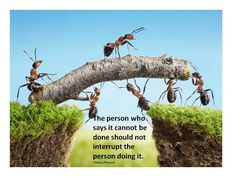 """""""The person who says it cannot be done should not interrupt the person doing it."""""""