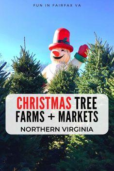 Where to Buy Christmas Trees in Northern Virginia - Fun in Fairfax VA