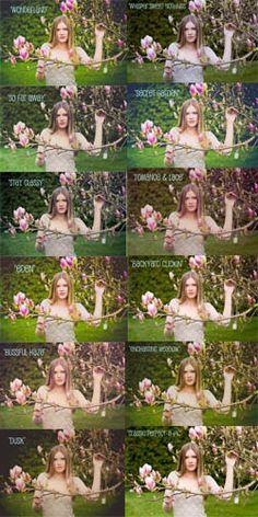 Lindsay Brisbin Photography   Presets for Lightroom 3.