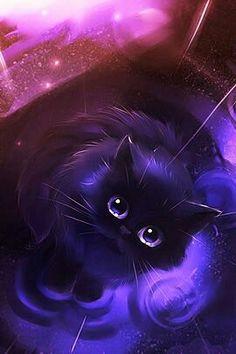 Gato, Galaxia