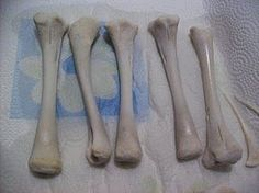 how to clean and keep real bones, plus several other good ideas?