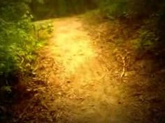 The 21´- Run. -