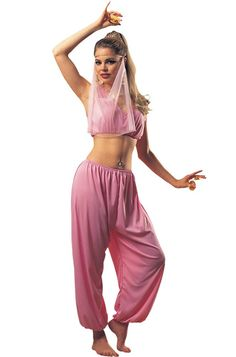 Costume includes headband with attached veil, crop top, and pantaloons. Women's standard fits up to size 12.