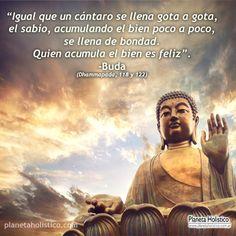 Frase de Buda