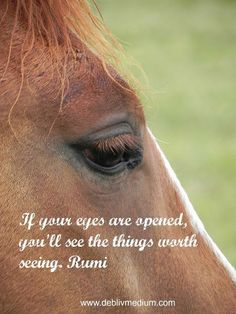 Open Your Eyes ~ Rumi quotes - http://www.awakening-intuition.com/rumi-quotes.html