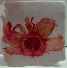 use Arnold Grummer Miscrofleur to save your flower and then add them to your handmade paper