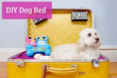 Our pets are like our family, so why not treat your four-legged friend to a custom, one-of-a-kind bed by re-purposing a vintage suitcase in just a few easy steps. This is a simple project that your dog...