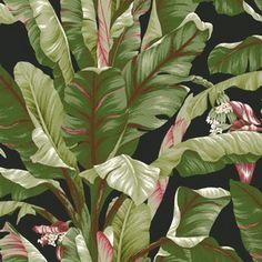 Hertex Wallpaper - Ashford tropics