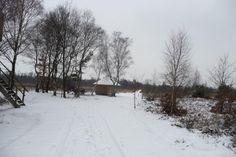 Winterfoto De Groote Peel (Truus Linders)