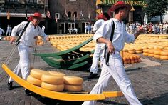 Nederlandse Kaasmarkt: they ham it up for the tourists but the Dutch _seriously_ love their dairy products.