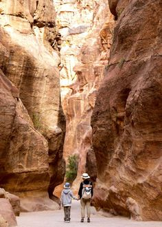 Jordan walking through the gorge to get to Petra. It is also possible to ride on horses with the feeling the walls are closing in on you Jordan Travel, Ancient Ruins, Antelope Canyon, The Good Place, Travel Inspiration, Jordans, To Go, Wanderlust, Around The Worlds