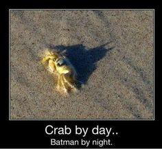 Crab shadow