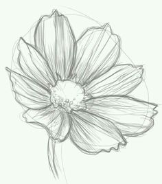 Easy to draw flowers pretty flowers by redsommer for details kptallat a kvetkezre black and white tattoo daisy mightylinksfo