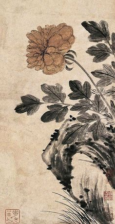 https://flic.kr/p/6i6tSC | 清-石涛-牡丹图 | Painted by the Qing Dynasty artist Shi Tao 石涛.  View paintings, artworks and galleries at Chinese Art Museum.  Learn about Chinese history and art at China Online Museum.