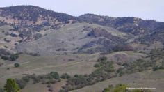 The San Andreas Fault runs through these hills at the northern end of Indian Valley Road. NW of Parkfield